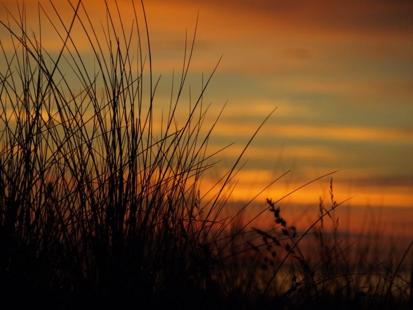 Düne im Sonnenuntergang