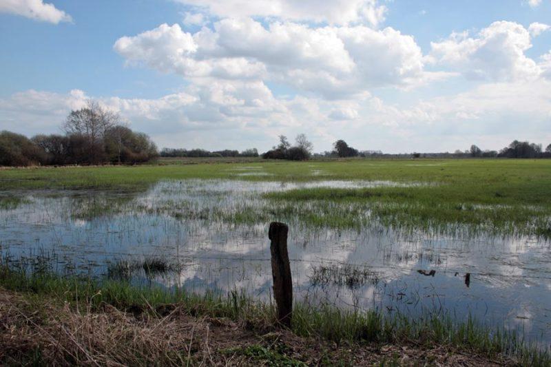 wuemmewiesen-ueberschwemmung