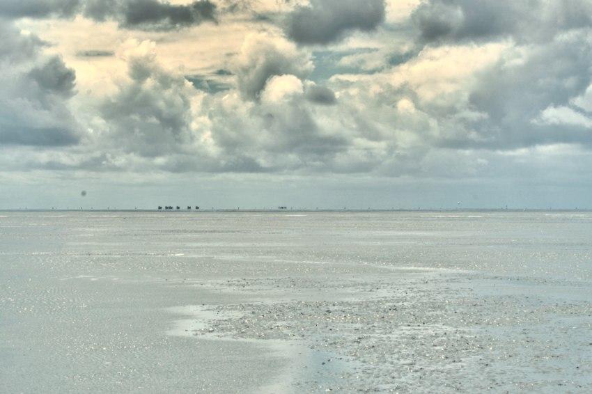 bernstein finden nordsee, cuxhaven bernsteinsuche